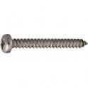 Vis tôle tête cylindrique bombé PZ2 - Ø 4,8 mm - 50,8 mm - Inox - Boîte de 100 pièces - Viswood
