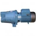 Pompe en fonte - JTF 150 - Fluxe