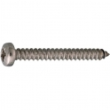 Vis tôle tête cylindrique bombé PZ2 - Ø 4,8 mm - 19 mm - Inox - Boîte de 200 pièces - Viswood