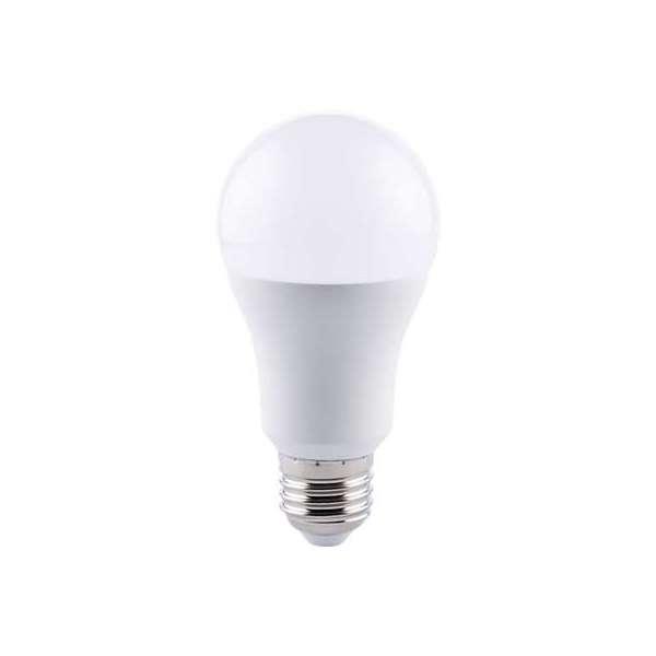 Ampoule LED standard E27 - 1521 Lumens - 14 W - 2700 K - Vendu par 10 - Dhome